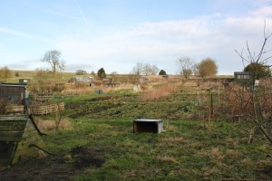 Over Haddon Allotments